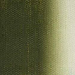 569 Зелений оливковий Marie's acrylic