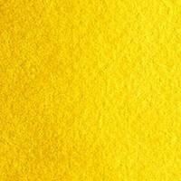 098 Індійський жовтий Venezia